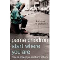 Pema Chodron's book