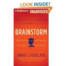 Brainstorm by Dan Siegel