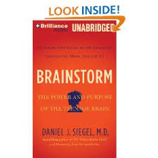Brainstorm by Dan Siegel