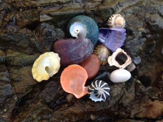 mindful treasures